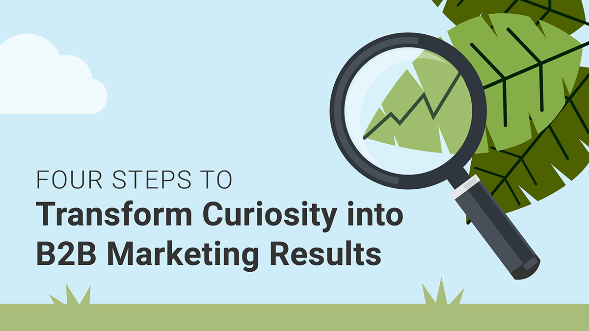 4 steps to transform curiosity into B2B marketing results