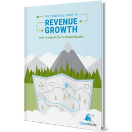 The Essential Guide to Revenue Growth