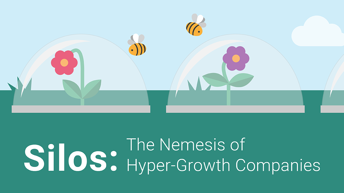 Silos-Nemesis-of-hyper-growth-companies